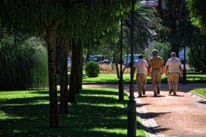 walk-in-the-garden