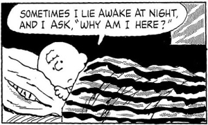 Charlie Brown: Why am I here?