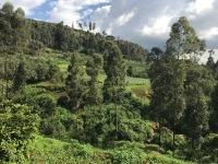 Scenic Uganda 2
