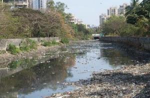 Contaminated River
