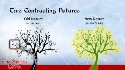 Two Contrasting Natures