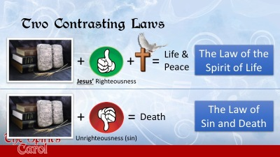 Two Contrasting Laws 3