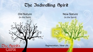 The Indwelling Spirit